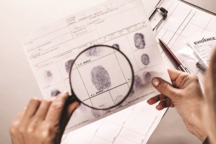 deduction-investigation-crime_1.jpg
